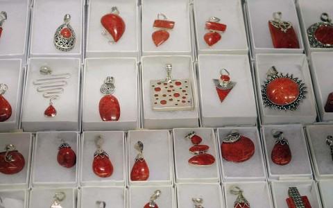 Bamboo Coral Jewelry