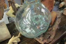 Hand Blown Glass on Driftwood
